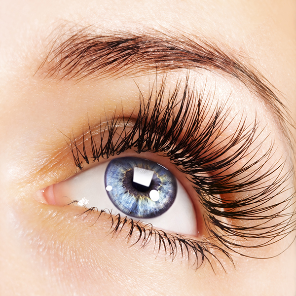 Majestic Eyelash Extensions